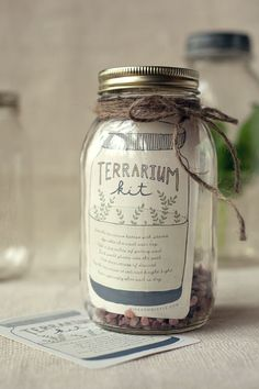 Terrarium Gift package idea. Learn how to make and care for terrariums - explore the best plants, moss, tools and techniques.