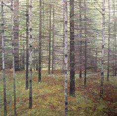 Peter Rotter, Evergreen Forest, oil on canvas, Lakefield, Ontario (from Arabella Canadian Landscape Competition) Canadian Painter Contemporary Landscape, Abstract Landscape, Contemporary Artists, Landscape Paintings, Landscapes, Canadian Painters, Canadian Artists, Evergreen Forest, Photo Tree