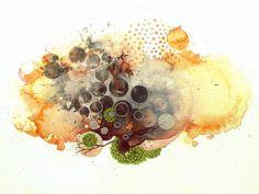 By Julie Evans