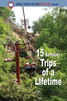 Low Cost Insurance Plan For The Welfare Of Your Loved Ones From Train Rides To Mountain Coasters, These 15 Day Trips In Kentucky Are Little-Known Getaways That Deserve A Spot On Your Summer Travel Bucket List. Camping Places, Vacation Places, Vacation Trips, Places To Travel, Travel Destinations, Beach Vacations, Vacation Travel, Travel Goals, Vacation Spots
