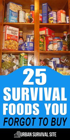 There are basic survival foods that can be found in every bunker. But there's a whole host of other survival foods that are often overlooked. storage ideas 25 Survival Foods You Forgot to Buy Emergency Preparedness Food, Emergency Food Storage, Emergency Food Supply, Emergency Preparation, Survival Prepping, Survival Skills, Survival Gear, Wilderness Survival, Survival Hacks