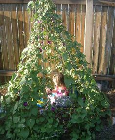 Create A Living Tent From Useful Plants for your kids!
