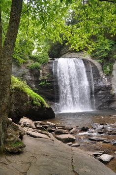 Looking glass falls. NC