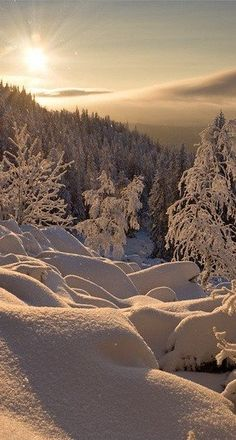Winter in the Russian Urals • photo: Nikolaya Obukhova on Postomania