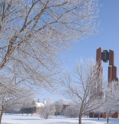 Taylor University, Upland, IN sparkles in the snow.  Grant County, Indiana