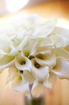 Sodo-Park-Herban-Feast-Wedding-green-white-wedding-flowers-silver-platinum-Flora-Nova-Design