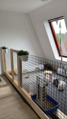 Diy Bunny Cage, Diy Guinea Pig Cage, Bunny Cages, Rabbit Cages, Guinea Pigs, Rabbit Shed, House Rabbit, Indoor Rabbit Cage, Indoor Rabbit House