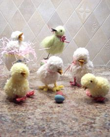 This brood of cute Easter chicks added extra cheer to the holiday.