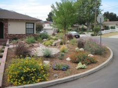 For California Drought Tolerant Landscape Design - Bing images Drought Resistant Landscaping, Garden Landscape Design, Backyard Design, Drought Tolerant Garden, Xeriscape Landscaping, Backyard