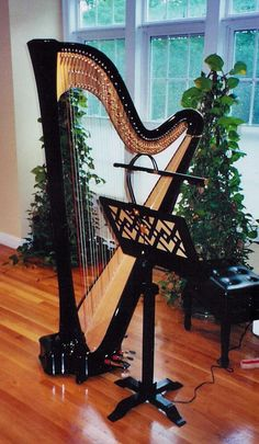 Beautiful Salvi Daphne 47EX Concert Grand in Ebony finish. in Harps by 크리스 최