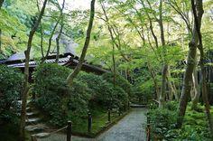 Giouji Temple | Travel Arrange Japan