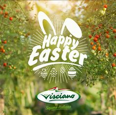 HAPPY EASTER 2016                VISCIANO - Sapore Italiano