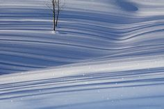 Winter Blues by Dusty Demerson | Earth Shots