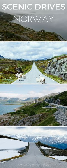 Norwegen mit dem Auto - die schönsten Strecken durch Norwegen zum Nachfahren für einen perfekten Roadtrip! Scenic drives through Norway for a perfect Roadtrip!