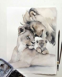 Ideas Tattoo Cat Realistic Animal Paintings For 2019 Animal Paintings, Animal Drawings, Art Drawings, Art Watercolor, Watercolor Animals, Lion Family, Lion Art, Cat Tattoo, Cat Art