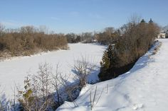 Photography by Suzanne:  A walk on the banks of the Grand River, Kitchener, Ontario