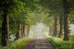 Road trip in Skåne, Charlottenlund in Skåne. Lonely Planet, Native Country, Roadtrip, Pathways, Countryside, Norway, Wander, Trip Advisor, Dreaming Of You