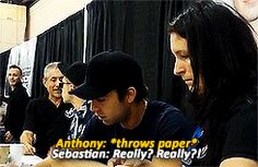 Hahaa| they are the cutest | Sebastian Stan | and | Anthony Mackie
