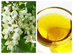 ULEIUL de SALCÂM – un leac foarte bun pentru PIELE | La Taifas Deodorant, Natural Remedies, Health And Wellness, Food And Drink, Hair Beauty, Good To Know, Fruit, Drinks, Healthy