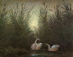 Learn more about Swans in the reed with first morning-red Caspar David Friedrich - oil artwork, painted by one of the most celebrated masters in the history of art. C D Friedrich, Caspar David Friedrich Paintings, Casper David, Nature Drawing, Soul Art, Large Art, Art World, Les Oeuvres, Landscape Paintings