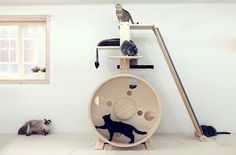 If you have a spare room that you need to Catify, check out these incredible cat towers from Korean company CatWheel. They're actually more like complete jungle gyms, with platforms, ramps, scratchers, hideaways, and exercise wheels. It looks like you can customize them to include anything you want