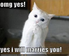 yes I will marries you