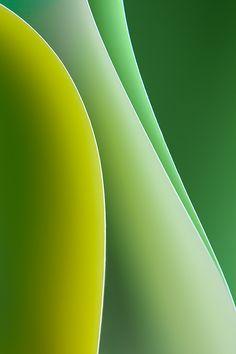 Photo Green by Malene Nielsen on 500px