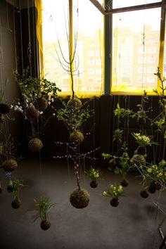 string garden | garden | Pinterest