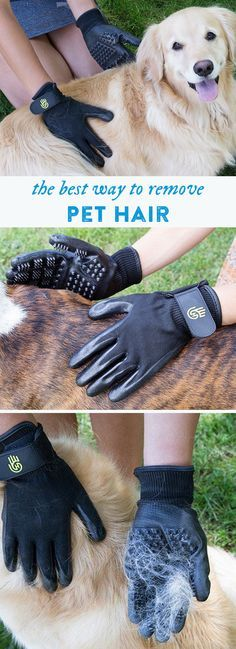These gloves make pet grooming easy. Make 'brushing' faster—and more enjoyable—for both you and your pet.