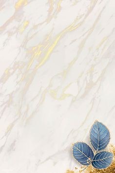 Blank leafy marble textured frame vector | premium image by rawpixel.com / Adj #vector #vectoart #digitalpainting #digitalartist #garphicdesign #sketch #digitaldrawing #doodle #illustrator #digitalillustration #modernart #marble Iphone Wallpaper Fall, Phone Wallpaper Images, Framed Wallpaper, Flower Background Wallpaper, Leaf Background, Textured Wallpaper, Flower Backgrounds, Background Patterns, Textured Background