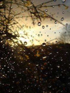 Rain Drops on Windowsil