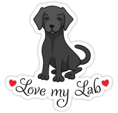 Love my lab labrador sticker with black labrador and red hearts.