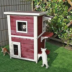 Petsfit 20Lx20Wx32H Outdoor Cat Shelter,Cat House / Condo With Escape Door