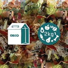 Each Obeo food waste box diverts of food waste from landfill. Food Waste, Compost, Recycling, Christmas Ornaments, Holiday Decor, Box, Home Decor, Diy Compost Bin, Xmas Ornaments