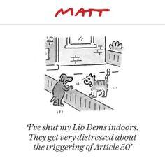 The Telegraph - Matt cartoons