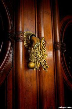 Door Knocker ... Gorgeous!