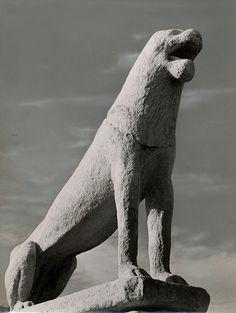 Herbert List, Archaic Lion II, Delos, 1937