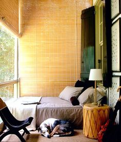 Small Bedroom. Great setup. Natural light and blinds