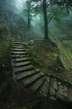 sublim-ature: Jelenia Góra, PolandKarol Nienartowicz
