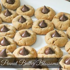 The MOST amazing Peanut Butter Blossoms recipe (chocolate hershey kiss cookies) - These turn out soft, delicious, and will be gone quick!