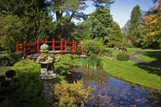 The Japanese Gardens at Tully located on the grounds of the Irish National Stud!