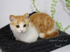 Beautiful needle felted cat by Hinali from Japan