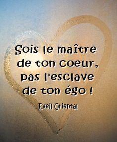 Le coeur et non l'ego - Paulo Coelho Positive Attitude, Positive Thoughts, Positive Quotes, Citations Sur L' Ego, Sweet Quotes, Me Quotes, Phone Quotes, French Proverbs, Positive Inspiration