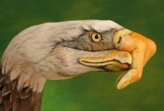 30 Unbelievable Hand Paintings by Guido Daniele - Smashcave