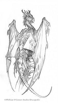 The Dracopedia Project: Dracopedia Sketchbook #007