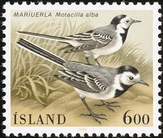 White Wagtail stamps - mainly images - gallery format
