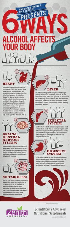 6 Ways Alcohol Affects Your Body. Heart, Liver, Skeletal system, Brain & Central nervous system, Digestive system, Metabolism. Best supplements from Zenith Nutrition. Health Supplements. Nutritional Supplements. Health Infographics
