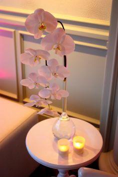 #phalaenopsis #vase #event #white
