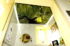 Creatief met plafondpanelen: badkamer in het bos! Bijzonder badkamerplafond met foto's op plafondpanelen Met foto's op kunststof plafondplaten kun je eenvoudig een uniek badkamer-plafond maken! Met een foto van groene boomtoppen in je systeemplafond,...