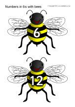 Numbers in 6s on bees